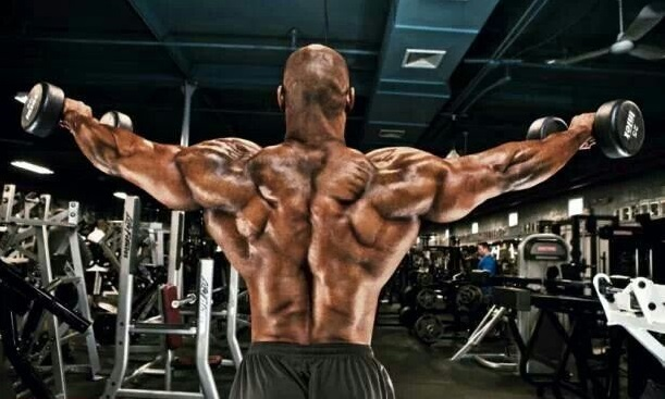 great-muscles-arimidex-anastrozole